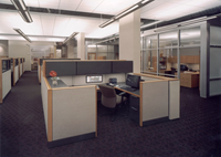 This is a picture of the open office area with indirect lighting and ceiling clouds.